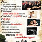 Falunapi plakát